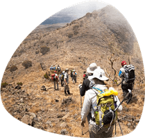 kilimanjaro-lemosho-route.jpg