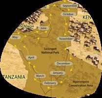 serengeti migration map