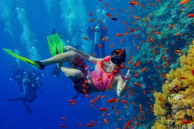 Snorkeling, Parasailing And Scuba Diving